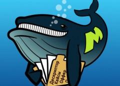 кит с книгой